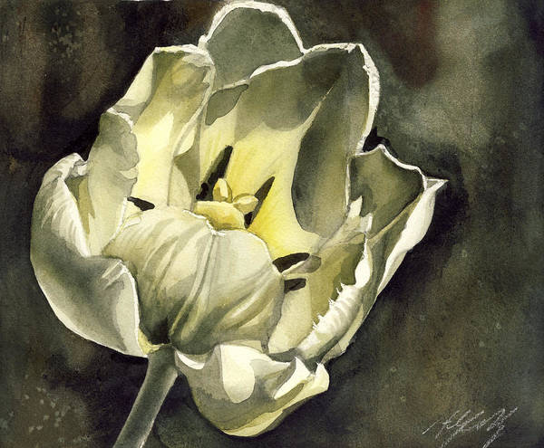 Painting - Tulip In White by Alfred Ng