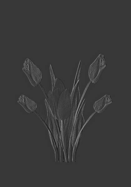 Digital Art - Tulips Design Drawing Dark Embossed  by David Dehner