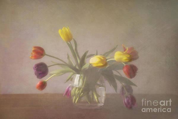 Photograph - Tulips by Elena Nosyreva