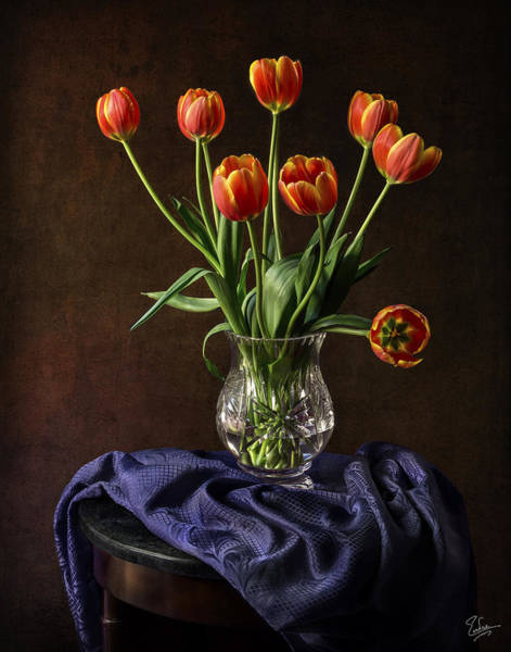 Photograph - Tulips In A Crystal Vase by Endre Balogh