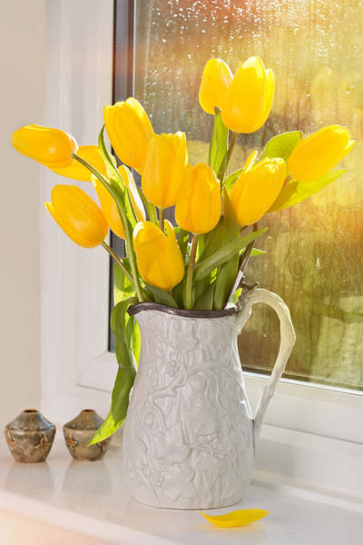 Windowsill Photograph - Tulips In Antique Jug by Amanda Elwell