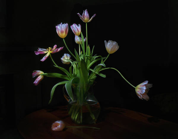 Vase Of Flowers Photograph - Tulips by Karen Von Knobloch Photographerkaren