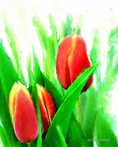 Non Representational Painting - Tulips by Moon Stumpp
