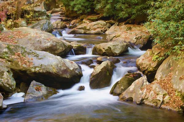 Photograph - Tullalah River II by Penny Lisowski