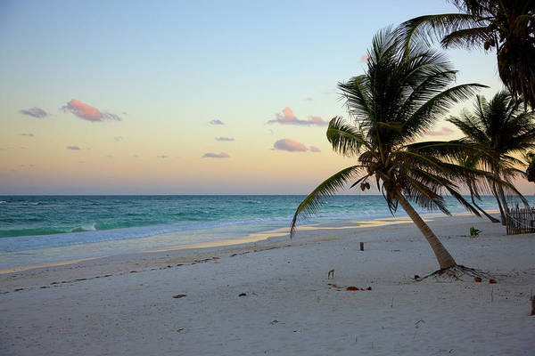 Mayan Riviera Photograph - Tulum Beach Looking Out To Caribbean by Sean Caffrey