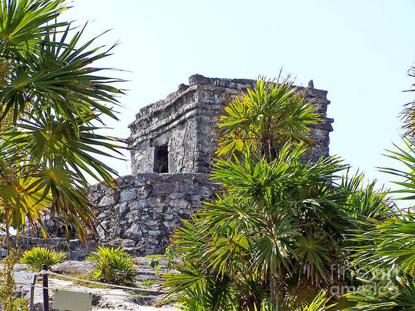 Photograph - Tulum Ruins Of Mexico - 4 by Tom Doud
