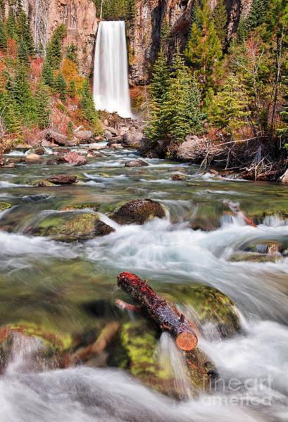 Photograph - Tumalo Falls II by Stuart Gordon