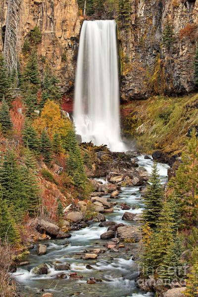 Photograph - Tumalo Falls by Stuart Gordon
