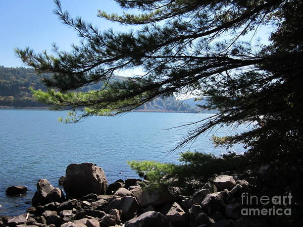 Photograph - Tumbled Rocks Trail by Kathie Chicoine