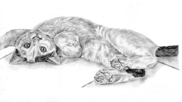 Drawing - Splodge by Pencil Paws