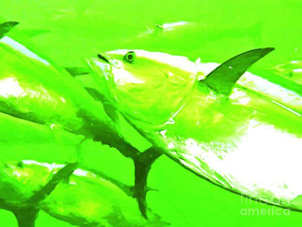 Skipjack Wall Art - Photograph - Tuna Fish by Wingsdomain Art and Photography