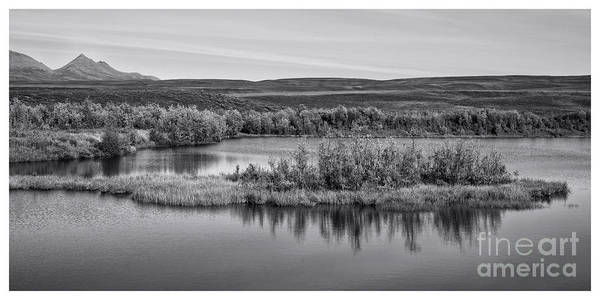 Wall Art - Photograph - Tundra Pond Reflections by Priska Wettstein