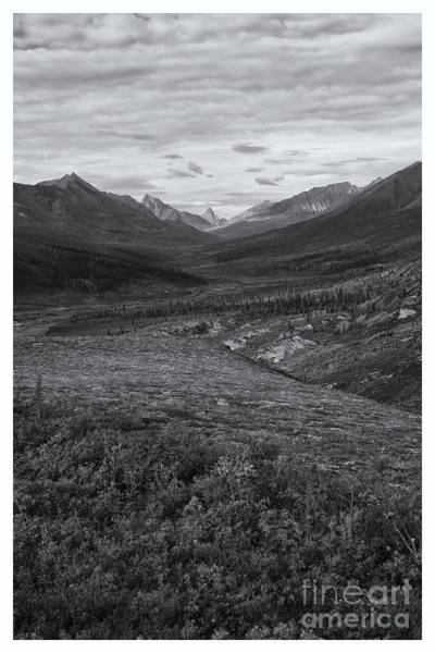 Untouched Wall Art - Photograph - Tundra Valley by Priska Wettstein