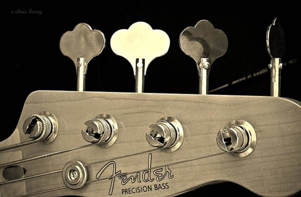 Blue Berry Photograph -  Fender Precision Bass Head by Chris Berry