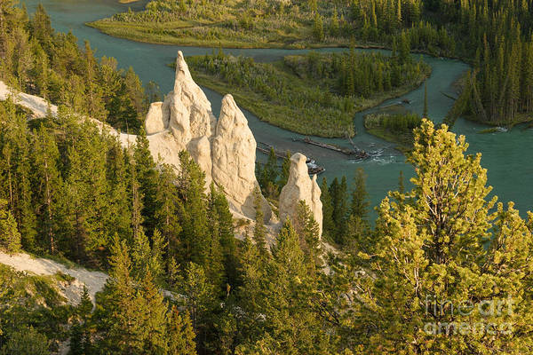 Photograph - Tunnel Mountain Hoodoos by Charles Kozierok