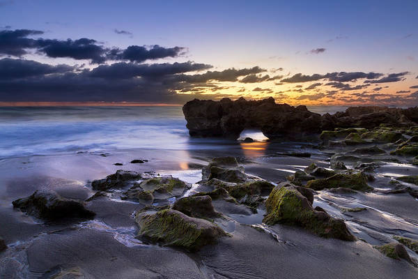 Hobe Sound Photograph - Tunnel Of Light by Debra and Dave Vanderlaan