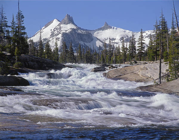 Photograph - 6m6539-tuolumne River  by Ed  Cooper Photography