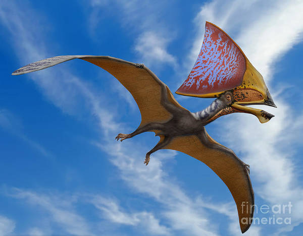 Paleozoology Wall Art - Digital Art - Tupandactylus Imperator, A Pterosaur by Sergey Krasovskiy