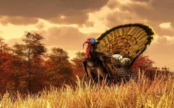 Digital Art - Turkey by Daniel Eskridge