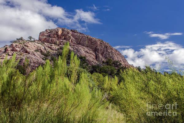 Photograph - Turkey Rock by David Cutts