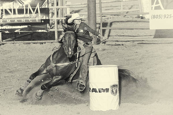Pferd Photograph - Turn by Caitlyn  Grasso