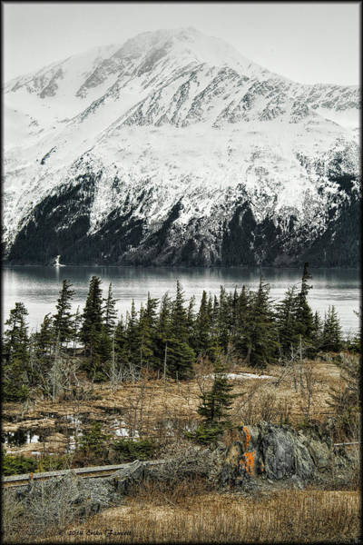 Turnagain Arm  Art Print