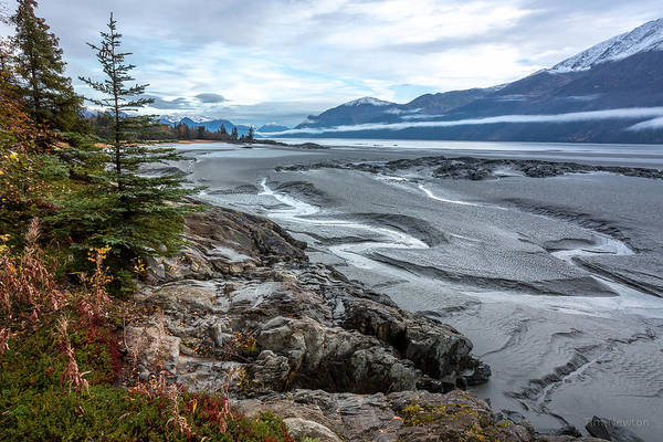 Photograph - Turnagain Tide Flats by Tim Newton