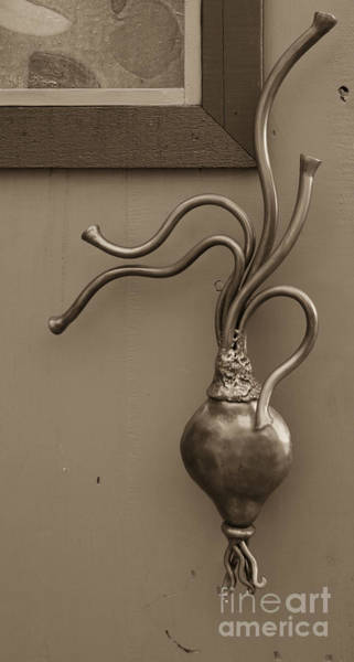 Photograph - Turnip Door Handle Heidi Erickson Sculpture by Kathi Shotwell