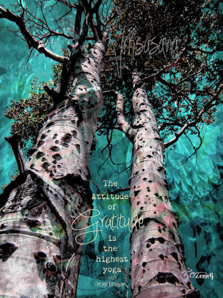 Photograph - Turquois Trees  by Cindy Greenstein
