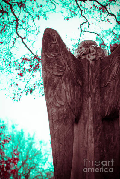 Wing Back Photograph - Turquoise Angel by Sonja Quintero