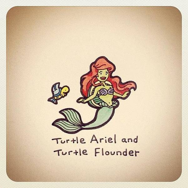 Reptiles Wall Art - Photograph - Turtle Ariel And Turtle Flounder by Turtle Wayne