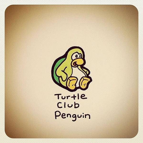 Reptiles Wall Art - Photograph - Turtle Club Penguin by Turtle Wayne