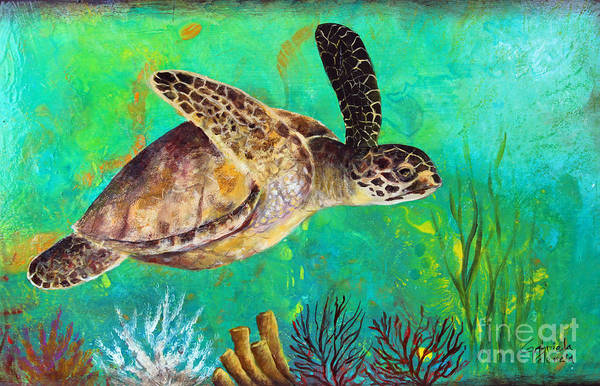 Wall Art - Painting - Turtle Fantasy by Gabriela Valencia