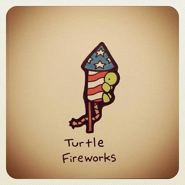 Reptiles Wall Art - Photograph - Turtle Fireworks by Turtle Wayne