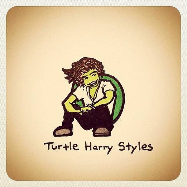 Reptiles Wall Art - Photograph - Turtle Harry Styles by Turtle Wayne