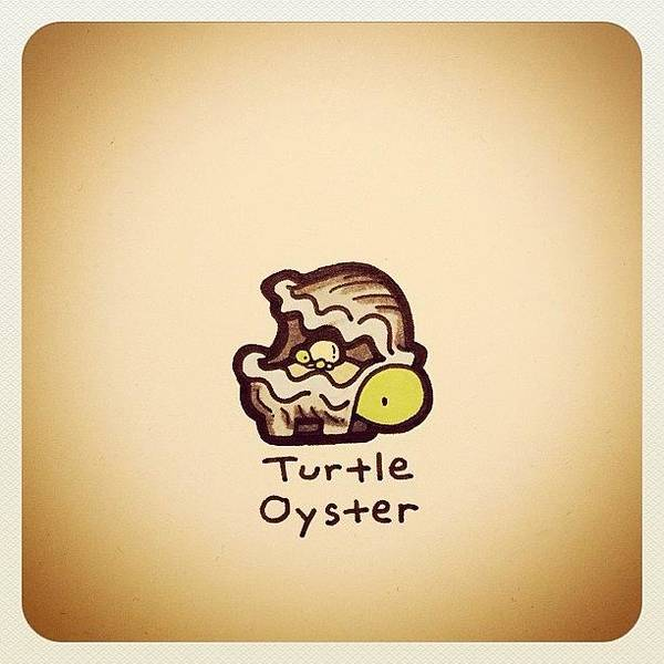 Reptiles Wall Art - Photograph - Turtle Oyster by Turtle Wayne