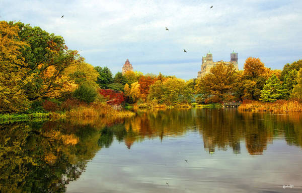 Wall Art - Photograph - Turtle Pond 2 - Central Park - Nyc by Madeline Ellis