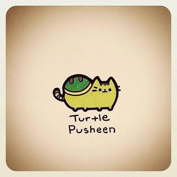 Reptiles Wall Art - Photograph - Turtle Pusheen by Turtle Wayne
