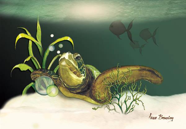 Turtle Swimming Over Reef Art Print