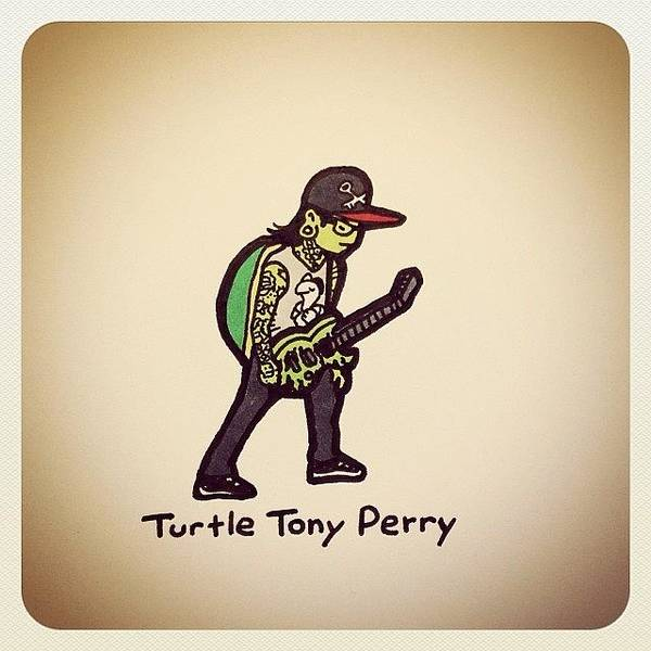 Reptiles Wall Art - Photograph - Turtle Tony Perry @tonyperry by Turtle Wayne