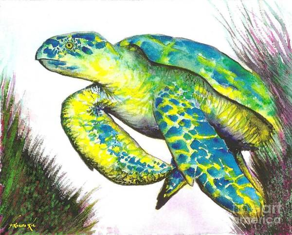 Turtle Wonder Art Print