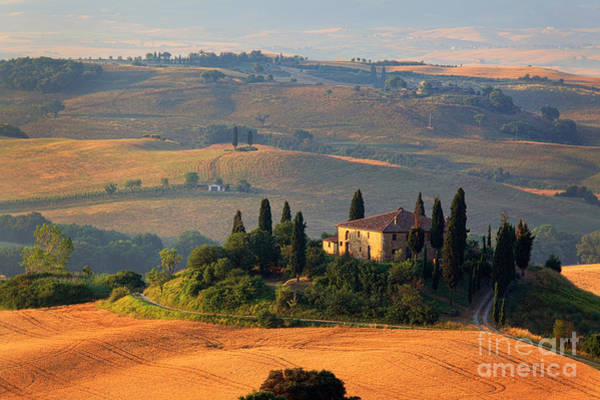 Field Trip Photograph - Tuscan Villa by Inge Johnsson