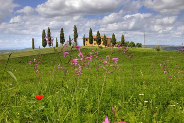 Siena Italy Photograph - Tuscany - Pienza by Joana Kruse