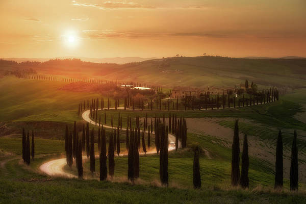 Colonnade Photograph - Tuscany Evening by Rostovskiy Anton