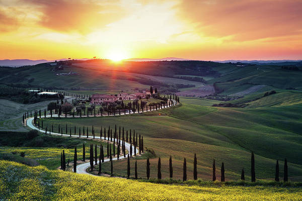 Urban Nature Photograph - Tuscany Landscape At Sunset by Borchee