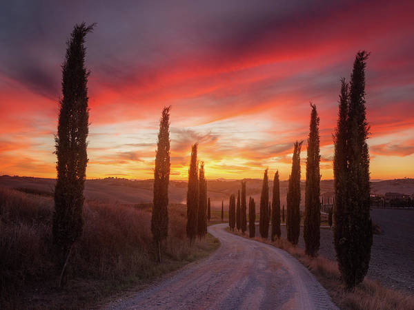Wall Art - Photograph - Tuscany Sunset by Rostovskiy Anton