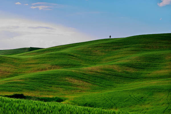Photograph - Tuscany Waves by Ivan Slosar