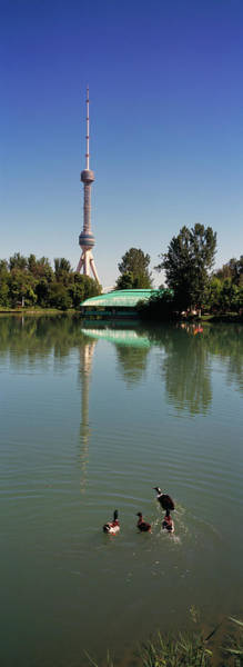 Wall Art - Photograph - Tv Tower At The Lakeside, Tashkent Tv by Animal Images