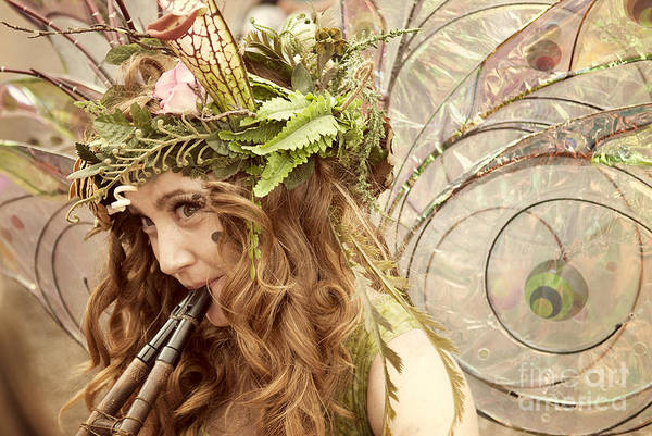 Renaissance Photograph - Twig The Fairy  by Juli Scalzi