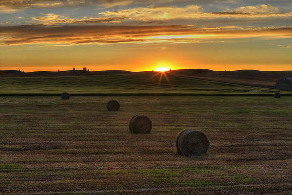 Photograph - Twilight Bales by Mark Kiver